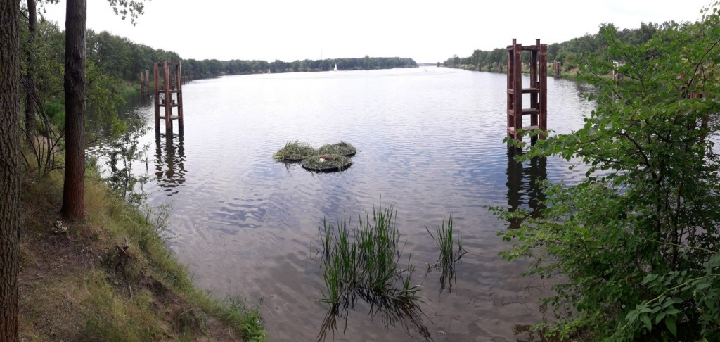Plywajace_Ogrody_Fundacja_OnWater.pl_20180617_145234